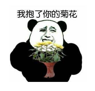 【2D精选/汉化】菊!花!绽!放!合集 精选鲤鱼蕃薯混剪!HD版【高能纯冲/超带劲/2G】